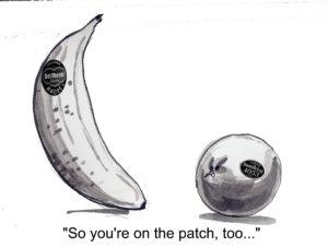 Banana Poop